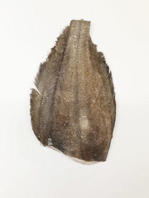 Grenladijos Otas be galvos, vidurių su oda ir kaulais. Dydis 2-3 kg/vnt